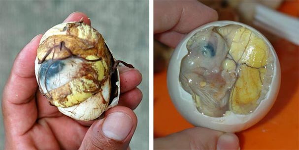 filipino food balut