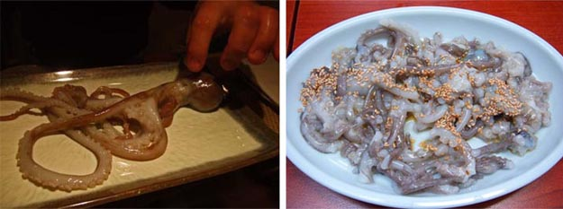 Weird And Slightly Disgusting Food From Around The World